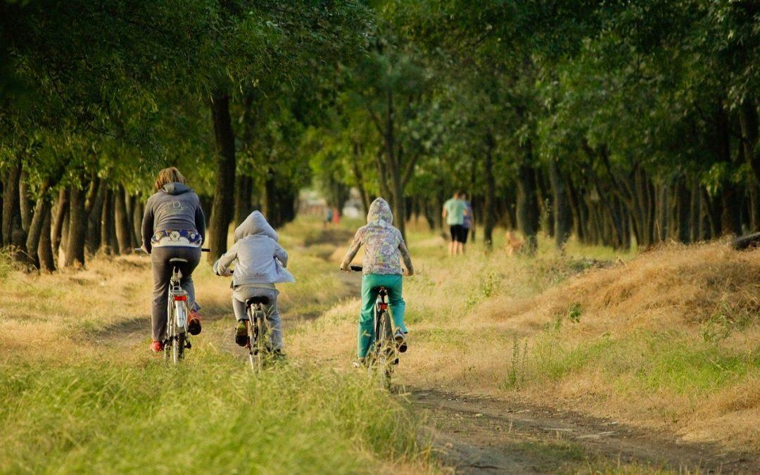 Conoce 5 parques del centro de Madrid montado en tu bicicleta