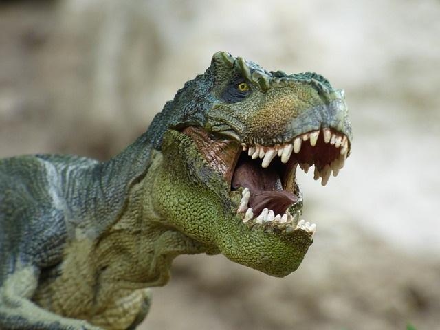 Un Tyrannosaurus Rex en el Reina Sofía
